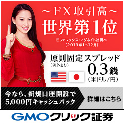 GMO証券 FXneo CM
