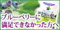 サプリメント【ブルーベリーは実より葉】