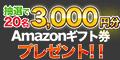 抽選で「Amazonギフト券(3,000円分)が当たる」プレゼントキャンペーン