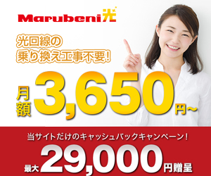 光回線が月額3,650円〜使える!【Marubeni光】